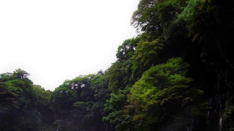 【静岡県で選ぶ復縁屋・復縁工作業者リスト】口コミ評判・特徴や料金から選ぼう